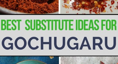 What Are The Best Ideas for Gochugaru Substitute?