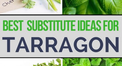 What Are the Best Tarragon Substitutes?