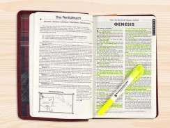 Best Bible Highlighters 2020 – In Depth Reviews