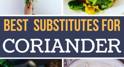 What Are the Best Coriander Substitutes for Cooking